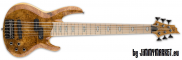 ESP LTD RB-1006 BM Honey Natural 6-Strunová