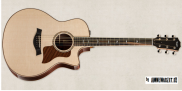 Taylor Guitars 816ce Grand Symphony Acoustic Electric with Cutaway
